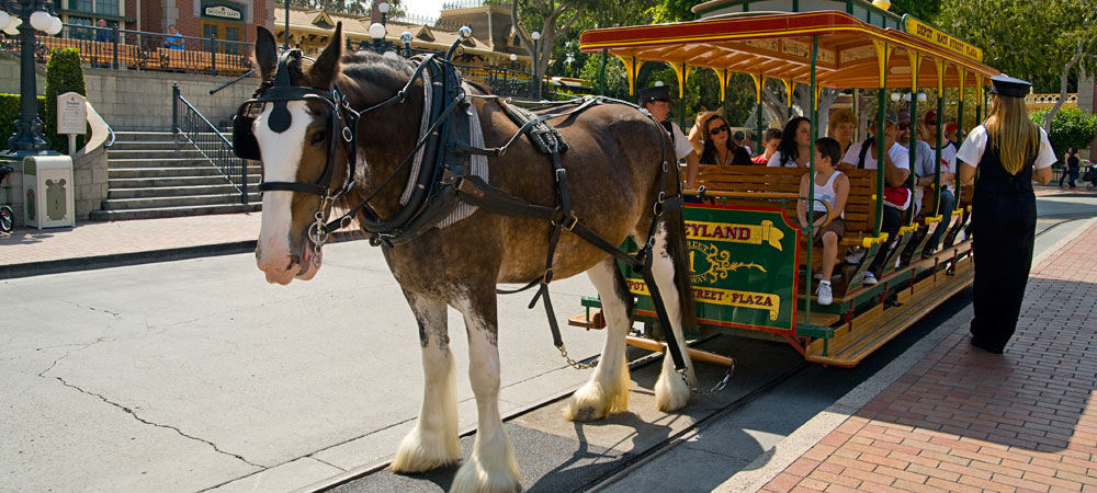 Main Street Vehicle